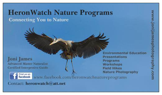 Nature Education Programs